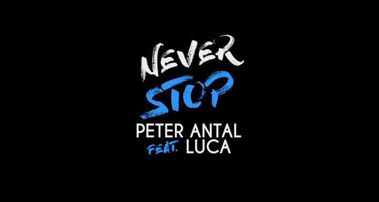 peter-antal-never-stop-wild-recordings